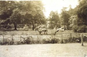 H Valle mowing at Kenwood 1937