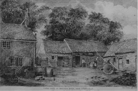 sketch-machon-bank-farm
